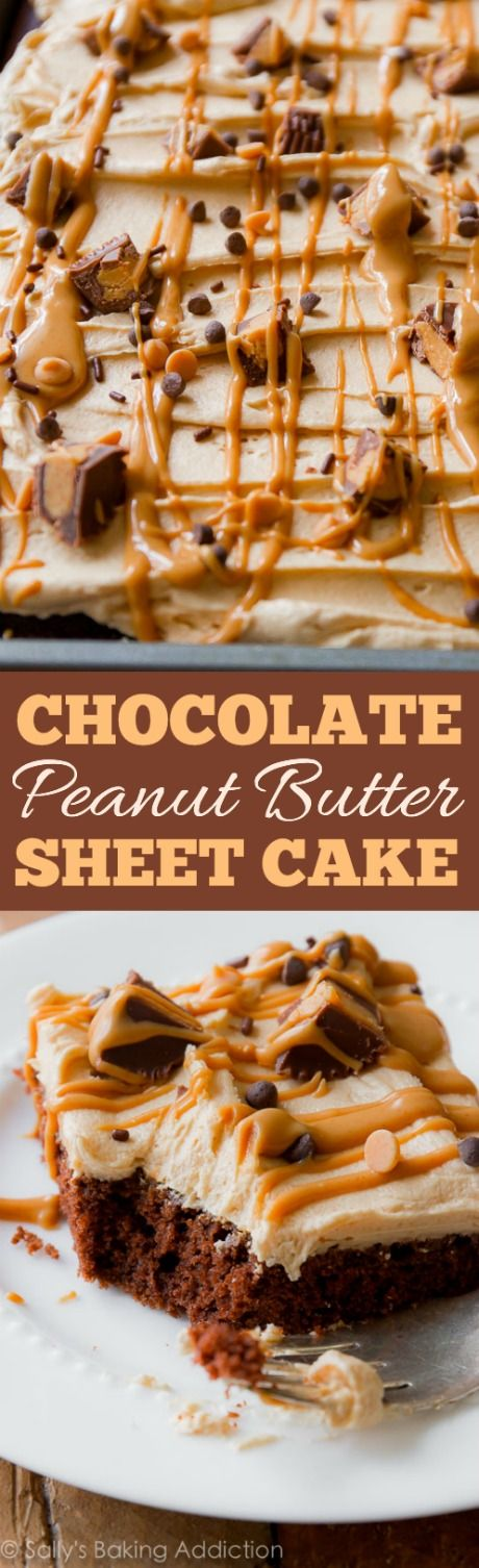 Chocolate Sheet Cake with Creamy Peanut Butter Frosting Dessert Recipe via Sally's Baking Addiction - Fudgy, beyond rich chocolate sheet cake topped with the creamiest peanut butter frosting. Feeds a crowd! The Best EASY Sheet Cakes Recipes - Simple and Quick Party Crowds Desserts for Holidays, Special Occasions and Family Celebrations