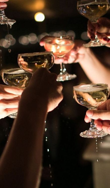 All the guests agree - this has been a marvelous evening. Just one last toast then time to call it a night.: