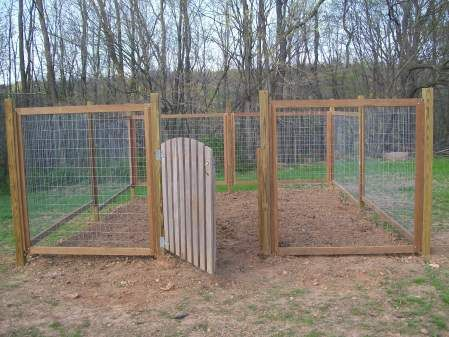 Vegetable Garden Fence Ideas Pinterest Eco Friendly Garden Fences