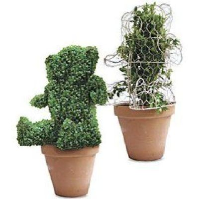 DIY topiary can be made using a wireframe