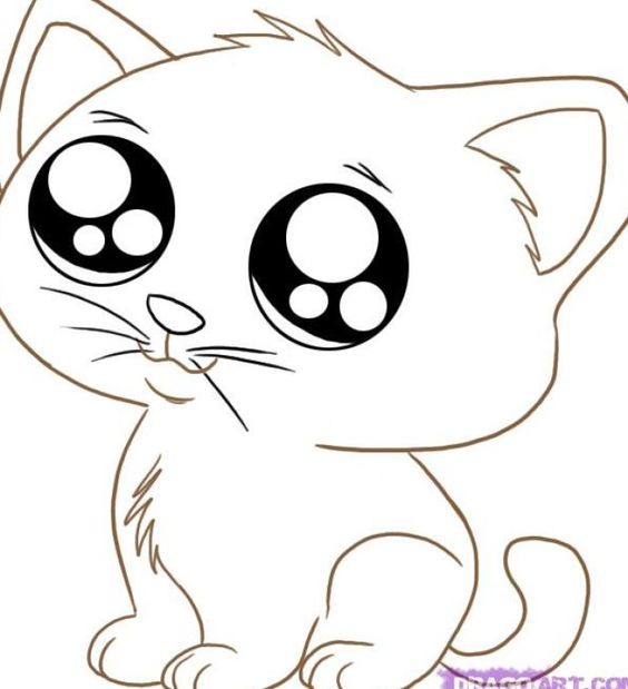 cute cartoon animals animal coloring pages and cute cartoon on