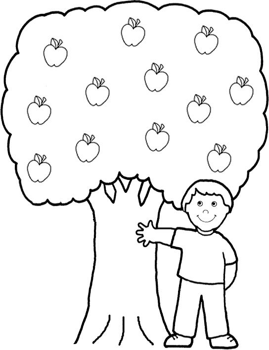 coloring for kids apple tree and page online on pinterest