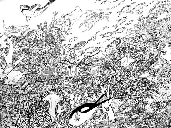 coral reefs coloring pages and coloring on pinterest