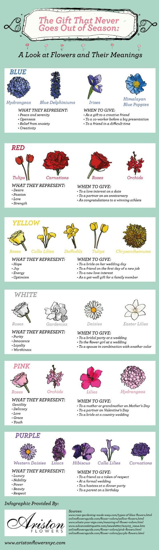 Flowers & their meanings. Curiosity Pinterest Happy