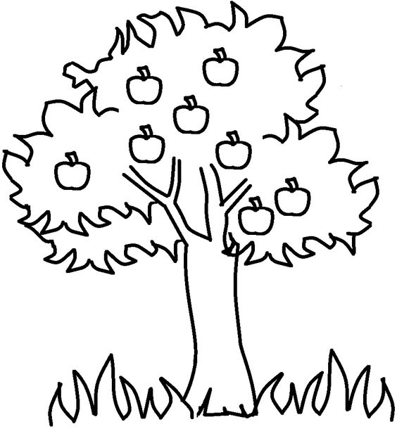 apple tree coloring pages and tree templates on pinterest