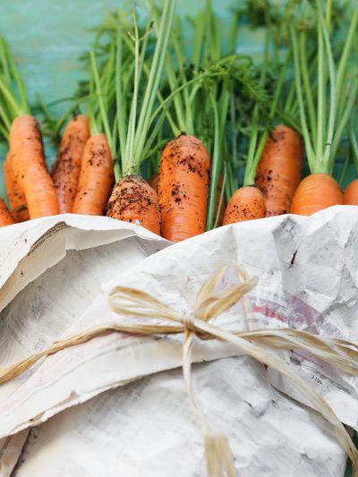 ba8af3c05346686f986a0bf57d486169 7 Seeds for Your Summer Garden