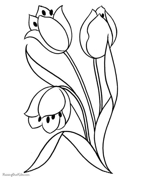 flower coloring pages coloring and coloring pages on pinterest