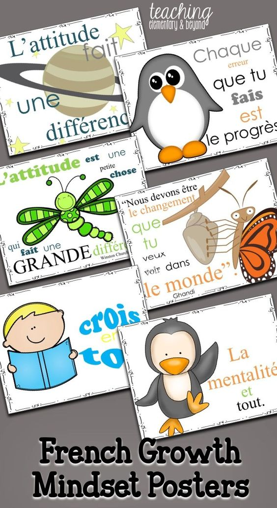 French Growth Mindset Posters {Second Pack}
