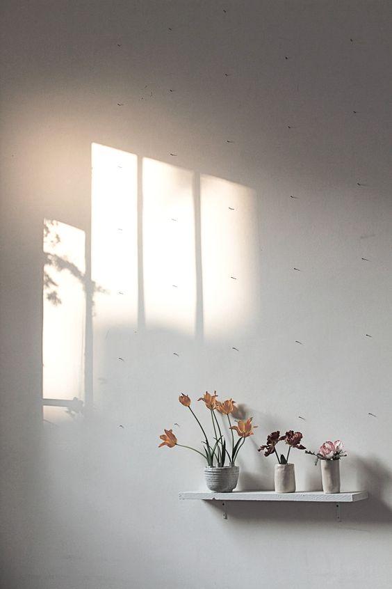 Den Blick schulen für alle Lichter, die es gibt (Quelle: 99roots.com)