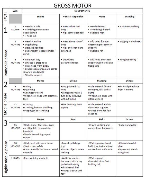 Peabody Developmental Motor Scales Chart Pdf