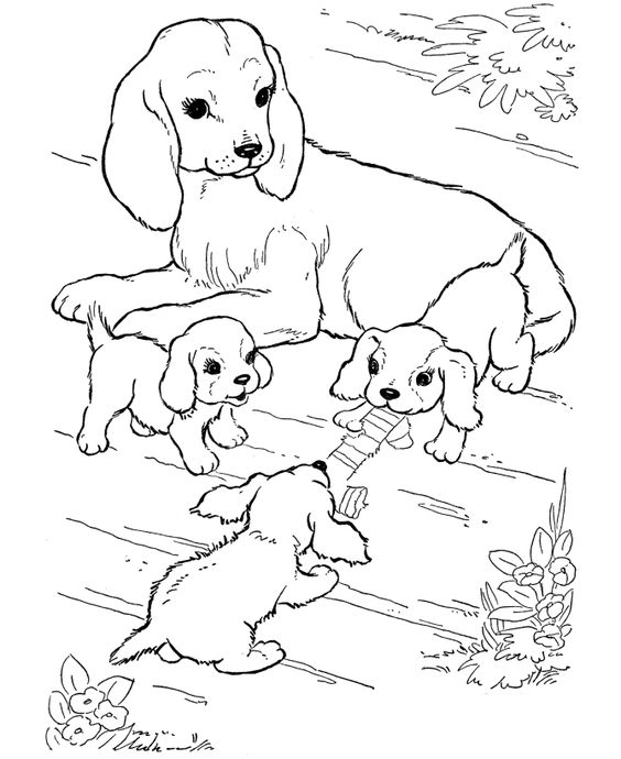 dogs and puppies coloring pages and coloring on pinterest