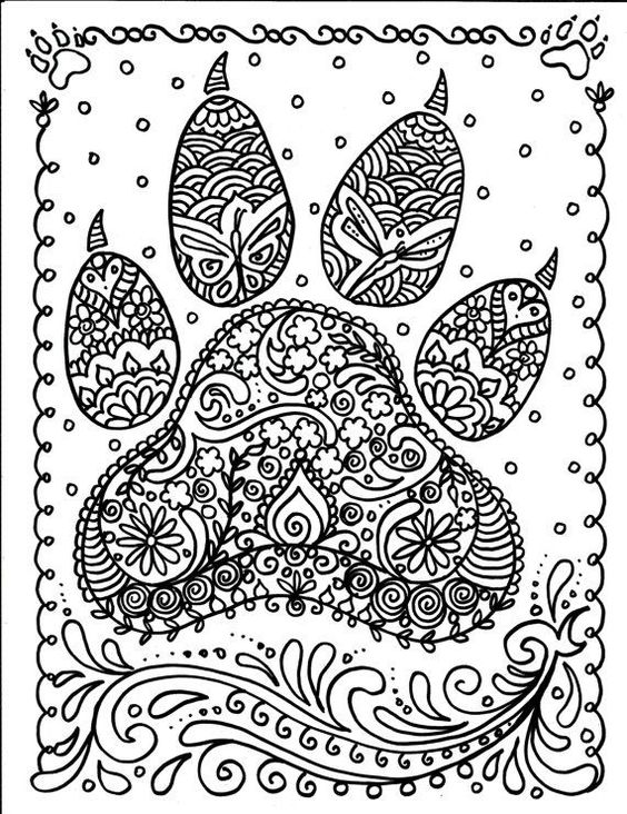 dog paw prints dog paws and the artist on pinterest