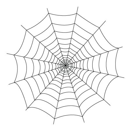 spider spider webs and coloring on pinterest