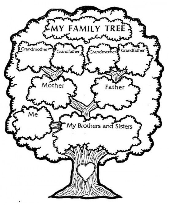 free pictures of family tree coloring pages colouring pages