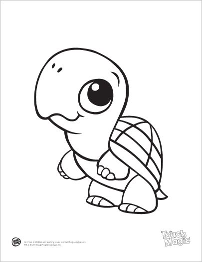 turtles animal coloring pages and baby animals on pinterest