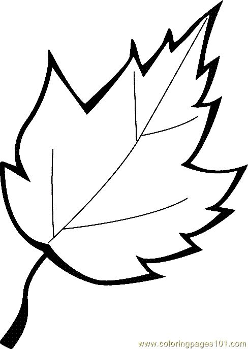 free printable coloring image leaf coloring page 13 fall time