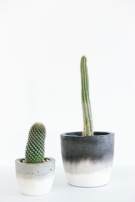 Fox & Ramona Concrete Homewares by Marnie Hawson | Made From Scratch: