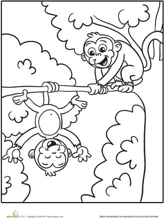 coloring pages monkey and coloring on pinterest