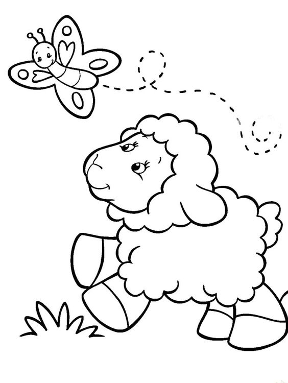 baby sheep coloring pages and coloring on pinterest