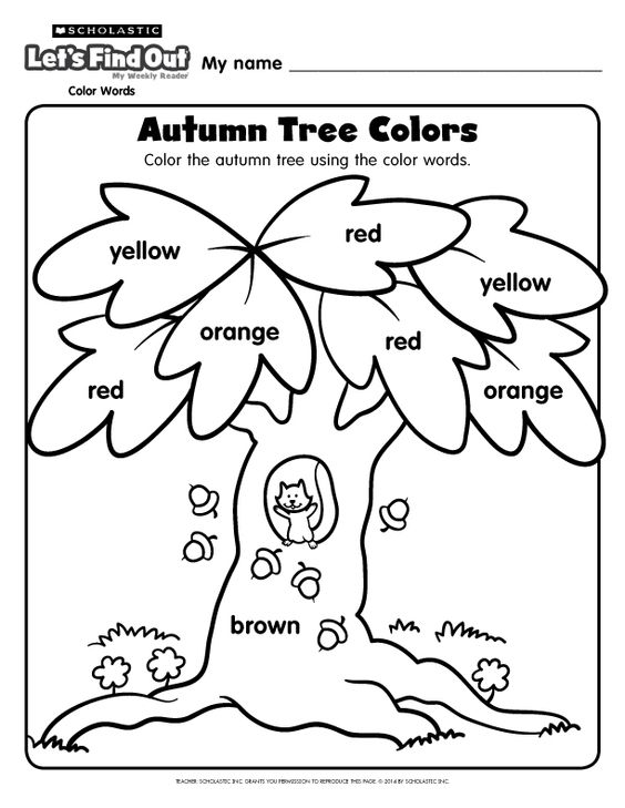 out magazine autumn trees and coloring pages on pinterest