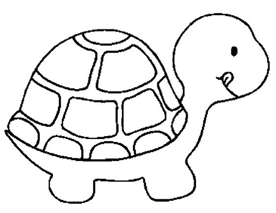 coloring pages kids find the latest news on turtle coloring