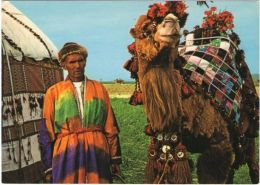 Postcard Image from Afghanistan, Turkmen Nomad from Northern Afghanistan, Ikat cloth...: