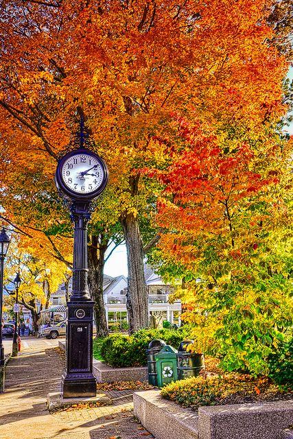 Maine, Autumn and Bar on Pinterest