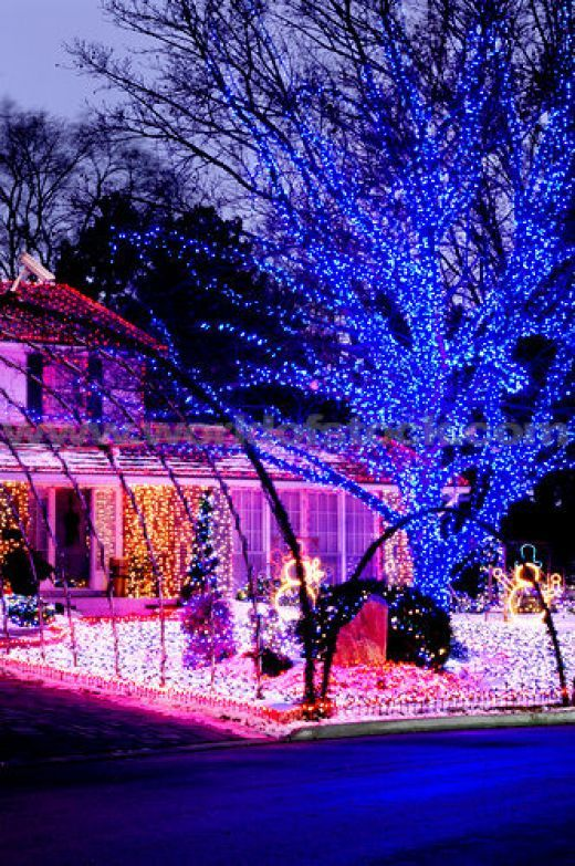 Purple Christmas Lights Pinterest Gardens, Outdoor