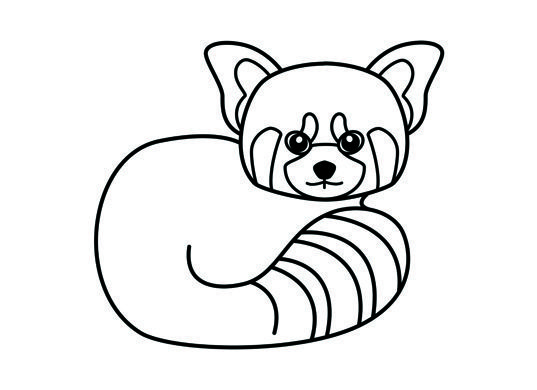 red panda coloring page kids pinterest daycare coloring