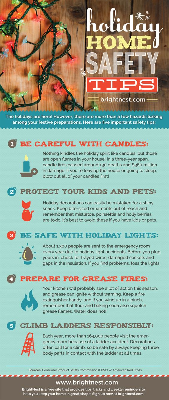 Holiday Home Safety Tips Pets, Happy and Christmas