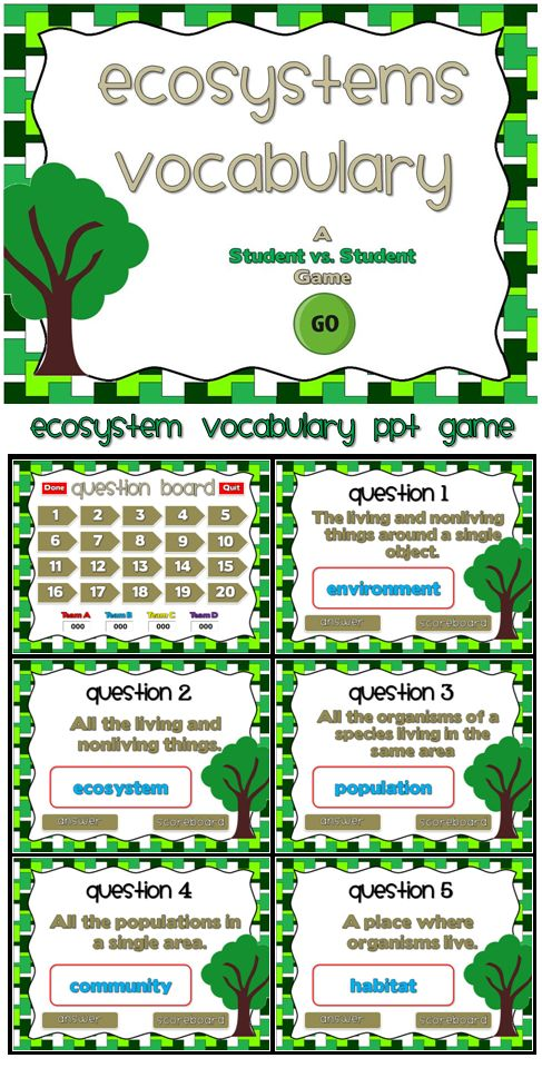 Ecosystems A Vocabulary PPT Game Definitions, Student