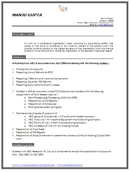 professional profile for resume resume help career profile help