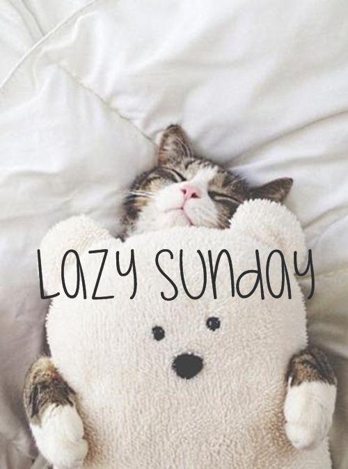 (((((((((((good morning love)))))))))) hav a lovely sunday...love you tonsssss...:
