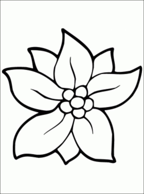 flower coloring pages christmas flowers and coloring pages on