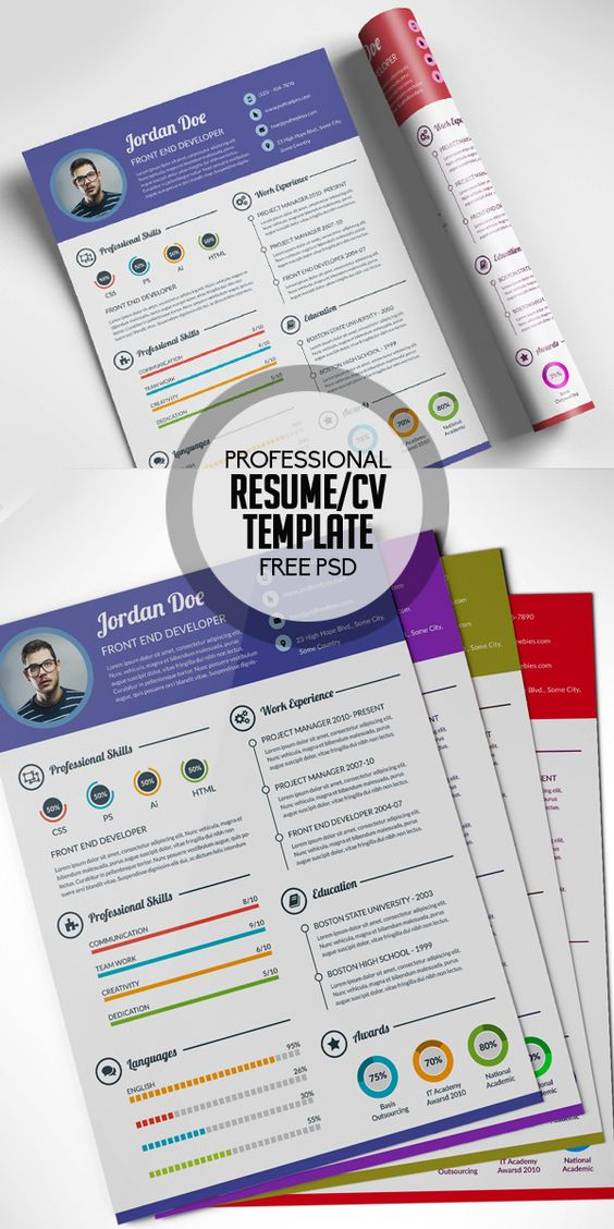 Free Professional Resume CV Template Free PSD Misc
