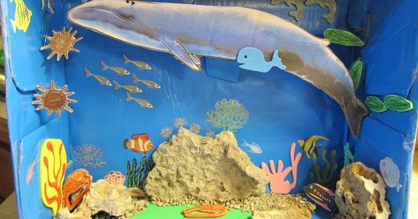salt water ecosystem diorama ideas