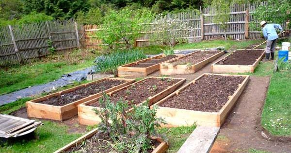 Building Raised Vegetable Garden Uneven Ground