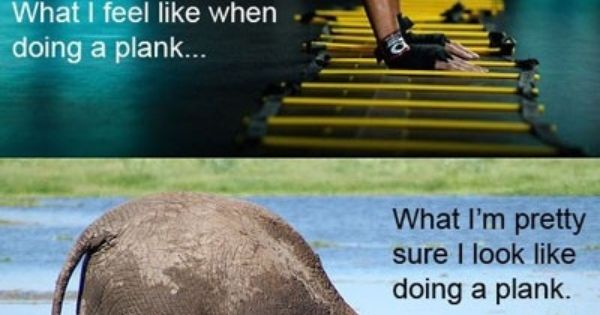 What Look Look When Plank Planking I I What I And Actually