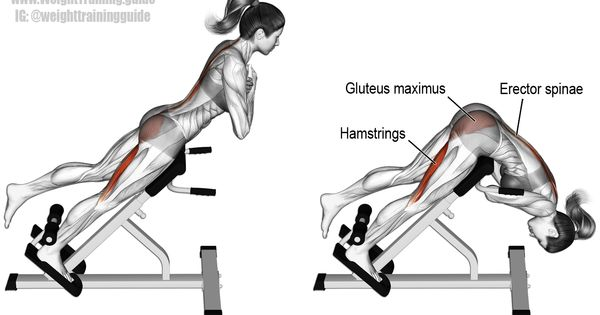 One Leg Hyperextension A Compound Exercise Target