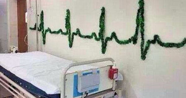Cardiology Christmas Science Pinterest Cardiology