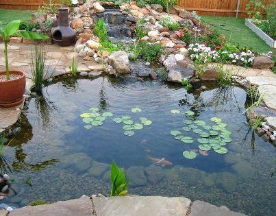 Build Your Own Koi Pond
