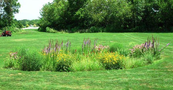 Raised Garden Drainage
