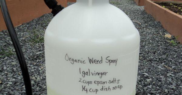 Weed Killer Vinegar Salt Recipe