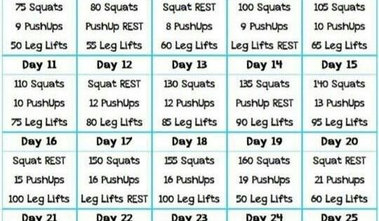 30 Day Challenge Squat Pushup Leg Lift Fitness