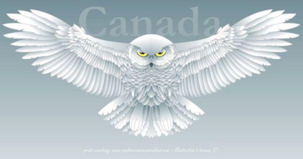 snowy owl owl printable and kid printables on pinterest