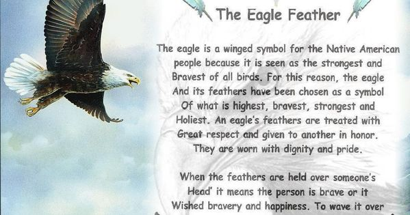 Quotes Feathers American Native Sayings And Indian