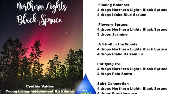 Northern Lights Herbal Incense