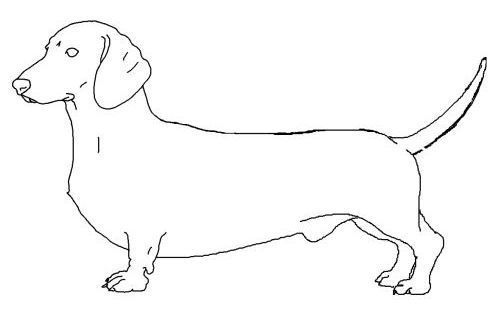 dog color pages printable   tweet coloring pages blog
