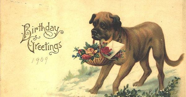 Dogs Mastiff Birthday Greetings Vintage Cards And
