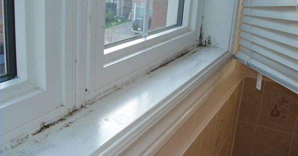 Is Black Mold Dangerous To Babies Remove Black Mold Cleaning And Remove Mold